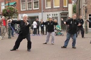 19 sept.2010 dag van de vooruitgang in Maassluis (10)